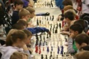 Best Chess Books for Kids Review