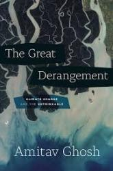 The Great Derangement Review