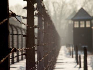 Important Books About Holocaust