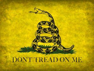 Libertarianism Best Books